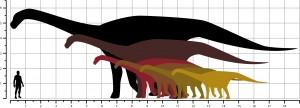 0_Comparativa_Sauropode_Orcau
