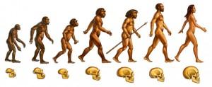 evolution genre